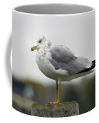 Gullwatch Coffee Mug