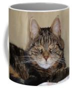 Gypsy 0007 Coffee Mug