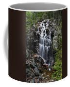 Hadlock Falls Acadia Coffee Mug