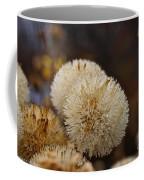 Hairy Aster Coffee Mug