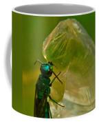 Halicid Bee 17 Coffee Mug
