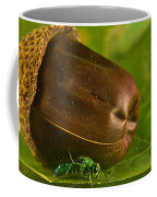 Halicid Bee 5 Coffee Mug