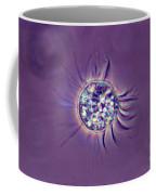Halteria Lm Coffee Mug