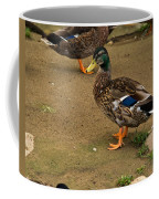 Handsome Mallard Coffee Mug