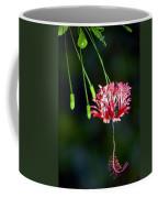 Hanging Coral Hibiscus Coffee Mug