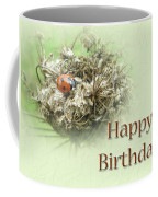 Happy Birthday Greeting Card - Ladybug On Dried Queen Anne's Lace Coffee Mug