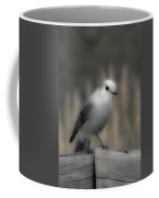 Happy Gray Jay Coffee Mug