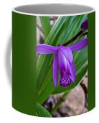 Hardy Orchid 1 Coffee Mug