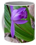Hardy Orchid 3 Coffee Mug
