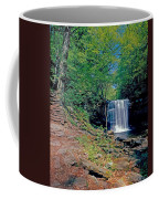 Harrison Wright Falls - Summertime Coffee Mug