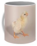 Hatching Chicken 22 Of 22 Coffee Mug