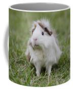 Have You Seen My Hairspray? Coffee Mug
