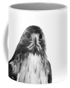 Hawk On White Background Coffee Mug