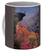 Hawks Beak Coffee Mug