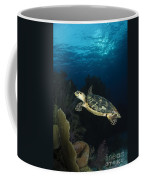 Hawksbill Sea Turtle Swimming Coffee Mug