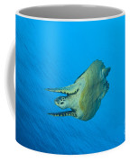 Hawksbill Turtle In The Diving Coffee Mug
