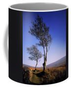 Hawthorn Trees In Sally Gap, County Coffee Mug