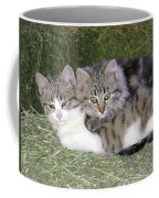 Haystack Buddies Coffee Mug