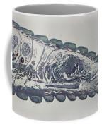 Head Of An Earthworm Coffee Mug