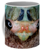 Head Of Cicada Coffee Mug