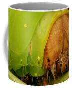 Head Of Polyphemus Caterpillar Coffee Mug