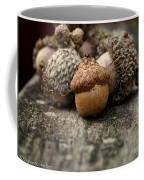 Head Of The Class Coffee Mug