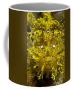 Head-on Portrait Of Yellow Coffee Mug