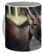 Headshot Eland Coffee Mug