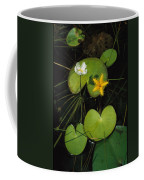 Heart-shaped Water Lily Coffee Mug