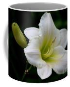 Heaven Sent Coffee Mug