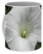 Hedge Morning Glory Coffee Mug