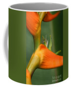 Heliconia Latispatha Coffee Mug