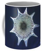 Heliodiscus Sp. Radiolarian Lm Coffee Mug