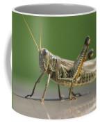 Hello Whatcha Doing Coffee Mug