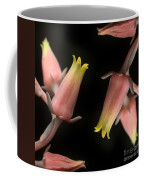 Hen And Chicks Coffee Mug