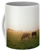 Hereford Cattle, Ireland Coffee Mug