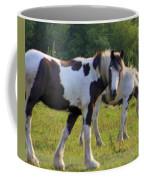 Here's Looking At Ya Coffee Mug