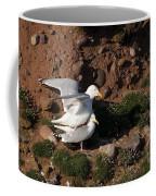 Herring Gulls Mating Coffee Mug