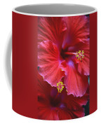 Hibiscus Duo Coffee Mug