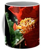 Hibiscus Highlight Coffee Mug