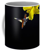 Hibiscus Hummer On Black Coffee Mug