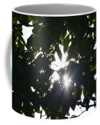 Hickory Triple Stars Coffee Mug