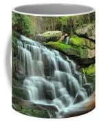 Hidden Elakala Falls Coffee Mug