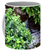 Hidden Waterfall Coffee Mug
