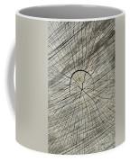 Hieroglyphics Coffee Mug