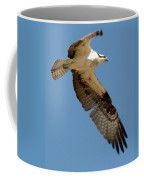 High Flyer Coffee Mug