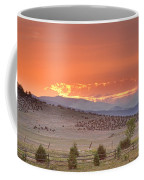 High Park Wildfire At Sunset Coffee Mug