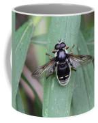 Highly Polished Coffee Mug