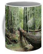 Hiker Moving Over A Fallen Redwood Tree Coffee Mug