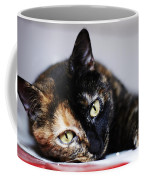 Himawari Coffee Mug